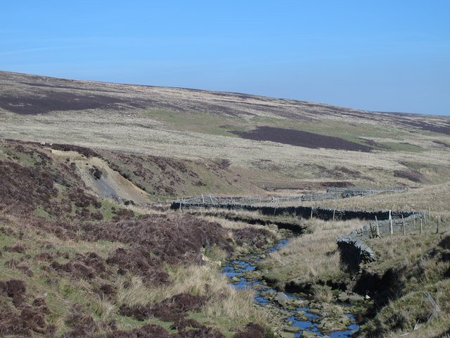Quickcleugh Burn northeast of Western Meadows