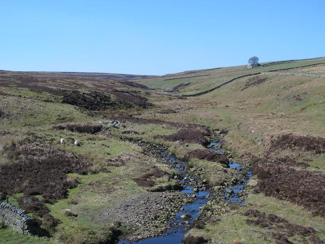 The valley of Henshaw Burn below Halleywell