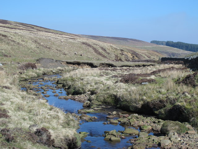 The valley of Beldon Burn below Riddlehamhope Fell