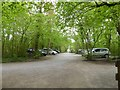 ST3623 : Car park for RSPB Swell Wood nature reserve by David Smith