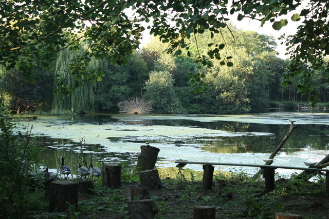 Lake and Sculpture at the River Waveney Study Centre