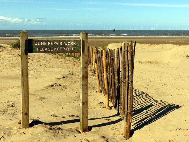 Dune repair work