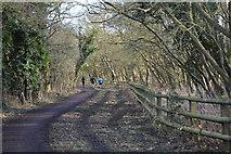TL4158 : The Wimpole Way by N Chadwick