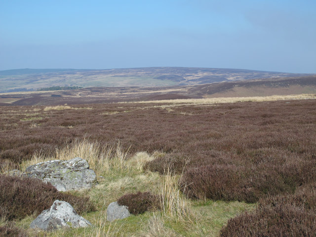 Moorland north of Riddlehamhope