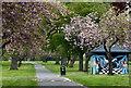 SK5603 : Path through Braunstone Park : Week 18