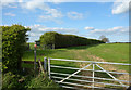 SP3306 : Footpath to Ducklington by Des Blenkinsopp
