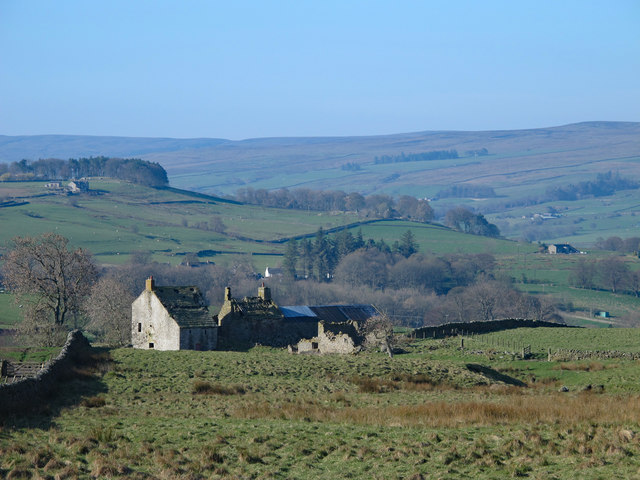 Rough pastures above Moor House