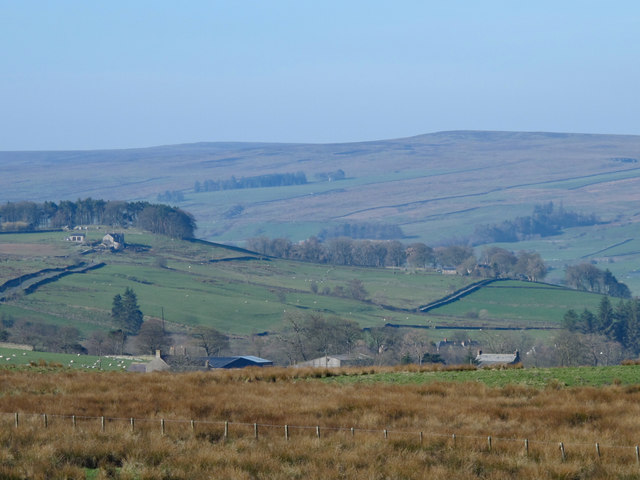 Rough pastures above Bull's Hill Farm