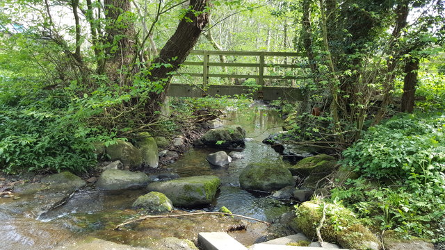 Footbridge over Darden Burn in Coastley Dean