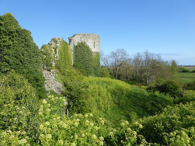 Pevensey Castle - Verdant growth in the moat