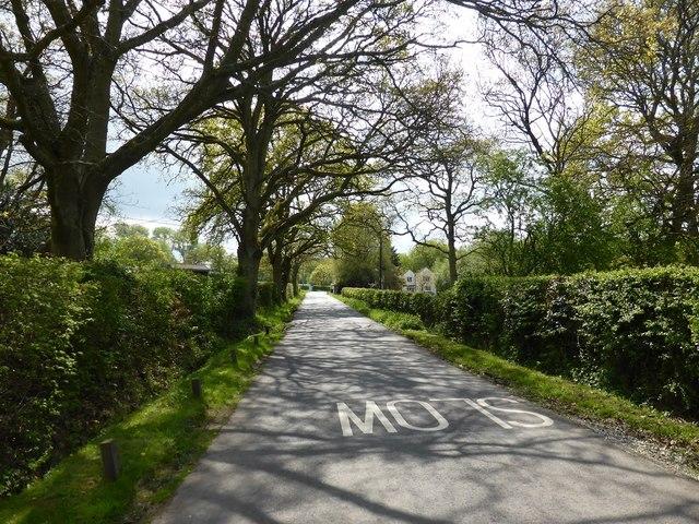 Boundary Road near Bowlers Farm