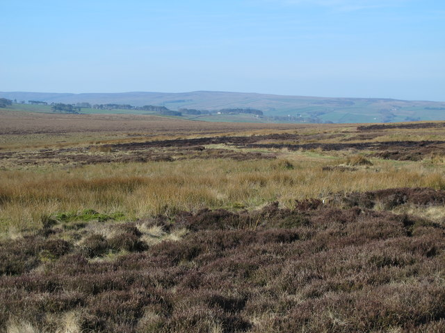 Moorland north of the Foumart Hills