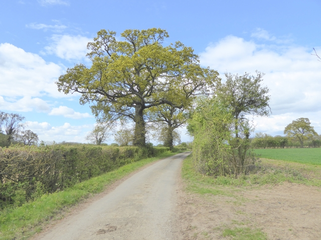 Pound Lane, Bredfield