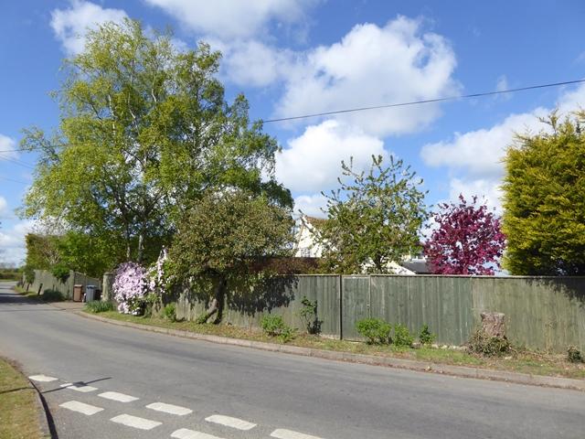 Roadside cottage at Hoo