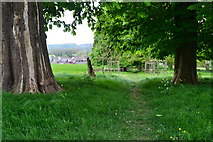ST6259 : Path to the church at Clutton by David Martin