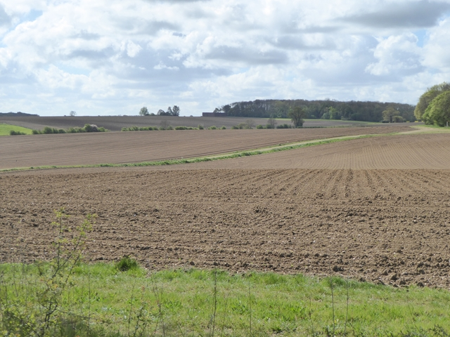 Ploughed fields at Hoo