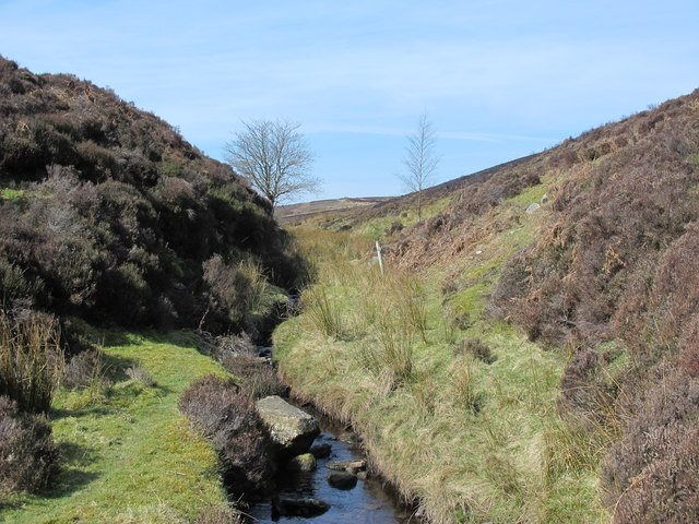 The cleugh of Lawsley Sike (2)