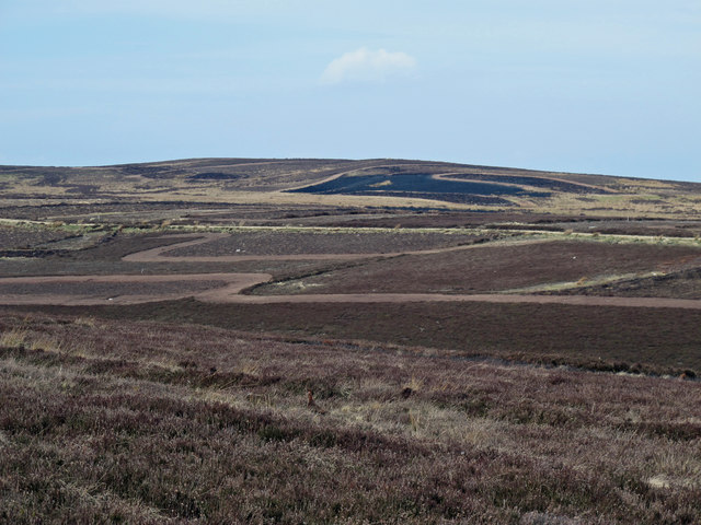 Moorland around the valley of Lawsley Sike (2)