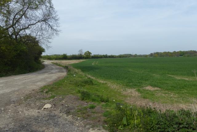 Footpath to Ingmanthorpe Grange