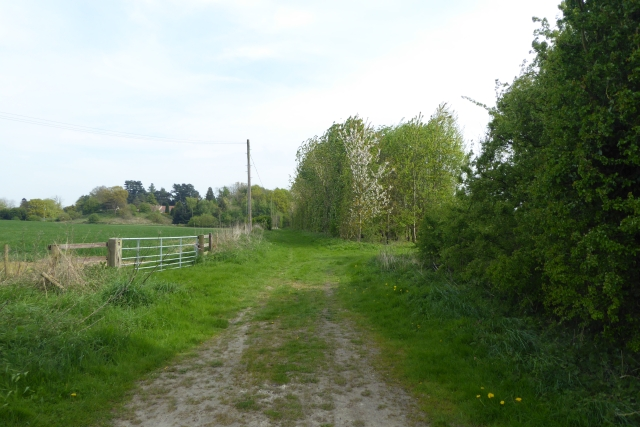 Bridleway to the B1224