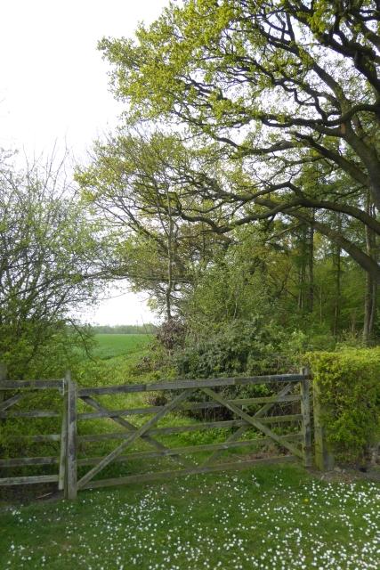 Bridleway to Sandbeck Lane