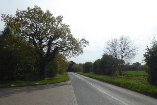 Springs Lane near the B1224