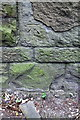 ST6172 : Benchmark on wall of Bridge 117m 21½ch MLN, Whitby Road by Roger Templeman