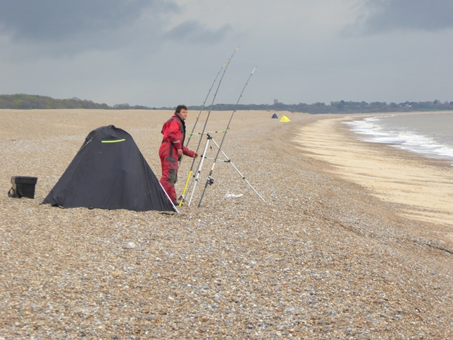 Sea angler on Dunwich beach