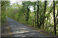SX5259 : Cycleway above the River Plym by Stephen McKay