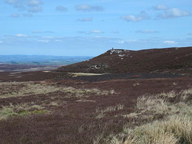 Moorland below Sinderhope Carrs