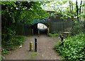 SP5798 : Path under the Leicester-Birmingham railway line by Mat Fascione