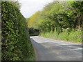 SX0456 : Bodelva Road near Carne Cross by Peter Wood