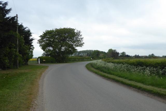 Road near Hollywood Farm
