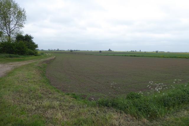 Track near Bonito Farm