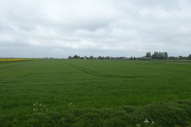 Farmland east of East Butterwick
