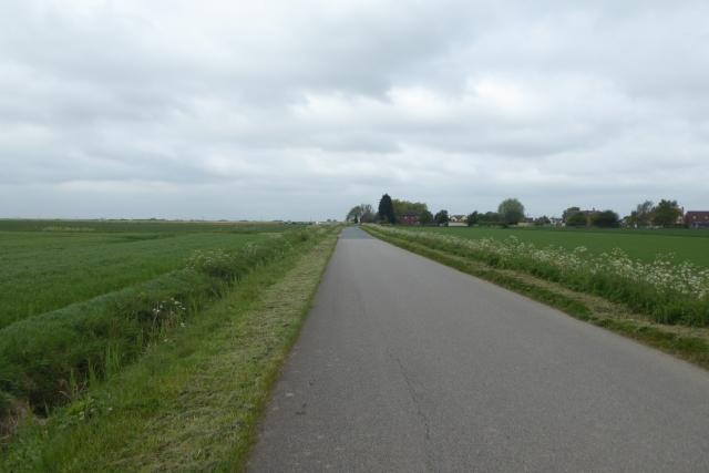 Looking along Butterwick Road