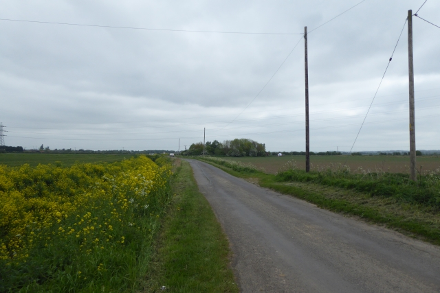 Road near Cedar Farm