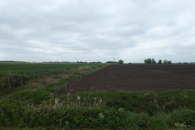 Fields east of Burringham