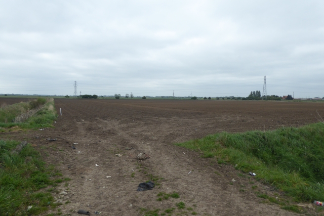 Field entrance east of Burringham