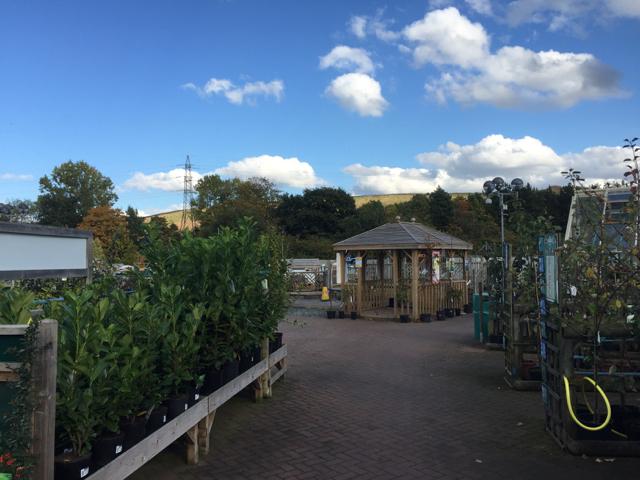 View in Melbicks garden centre, near Little Packington