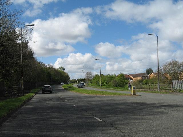 Oak Drive North