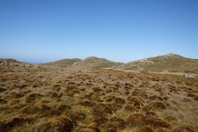 Tussocks, Garner Bank