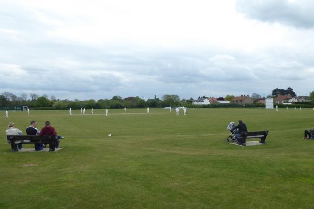 Saturday cricket