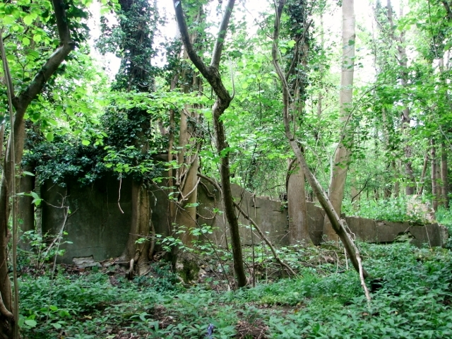 Remains of a military building