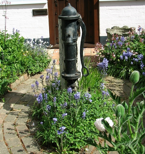 Old water pump in the front garden of Dairy Cottage
