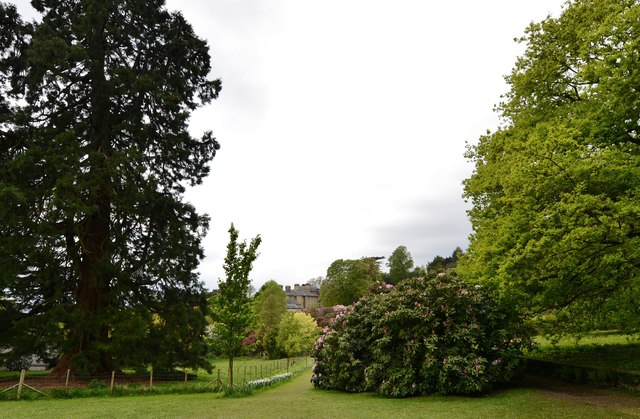 Riverhill Himalayan Garden: Looking towards the house