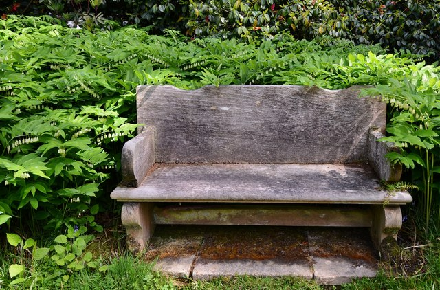 High Beeches Garden: The Oak Seat