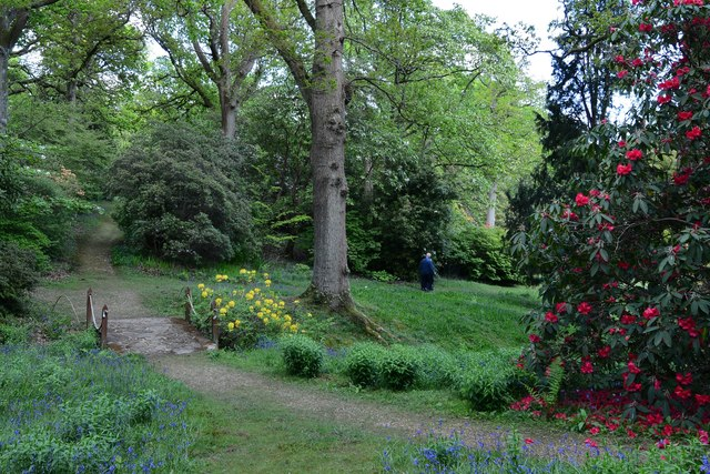 High Beeches Garden: The view from the Colonel's Seat