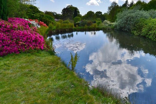 High Beeches Garden: The Top Pond