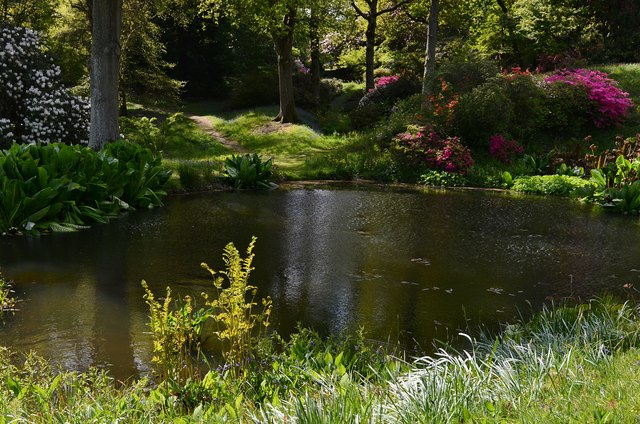 High Beeches Garden: The Centre Pond
